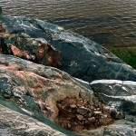 "Acasta gneiss, NWT Canada-- The blue-green color gives this ancient stone the look and feel of whale skin. As one geologist put it, ""This is as close to the original skin of Earth as you can get."""