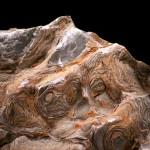 Yellowknife Fossil Stromatolite profile